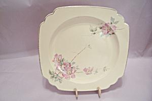 Homer Laughlin Wild Rose Pattern China Plate (Image1)