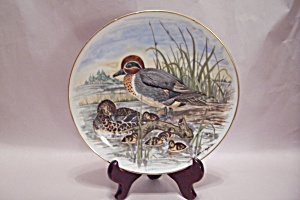 Game Birds Of The South Green-winged Teal Plate