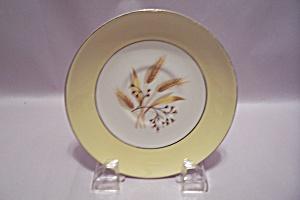 Century Service Autumn Gold Pattern China Saucer (Image1)