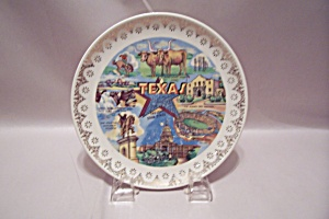 Texas Souvenir Collector Plate