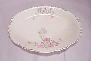 Homer Laughlin Virginia Rose Pattern China Oval Platter