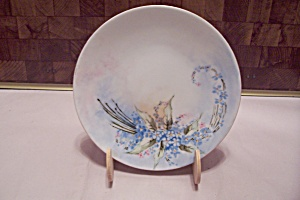 Bavarian China Flower Decorated Plate