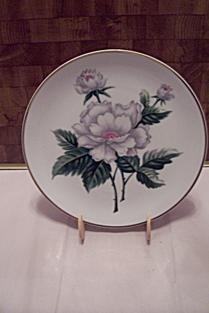 Occupied Japan Hand Painted White Flower Plate