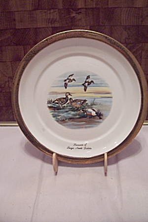Fargo, North Dakota Souvenir Collector Plate