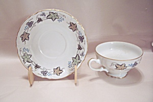 Style House Bordeaux Pattern Fine China Cup & Saucer