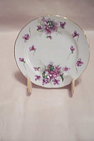 Rossetti China Spring Violets Pattern Plate