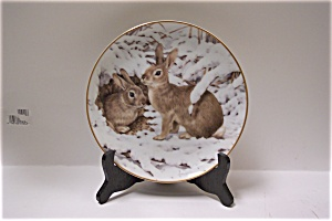 Rabbits In The January Snow Collector Plate