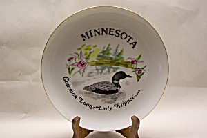Minnesota Loon Souvenir Collector Plate