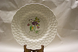 Vintage Copeland Spode English Collector Plate