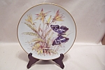 Gloria Fine China Collector Plate