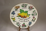 Click here to enlarge image and see more about item BG00509: Floral Emblems Of Canada Collector Plate