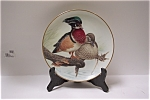 Wood Ducks In The July Sun Collector Plate