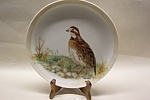 Click here to enlarge image and see more about item CP134: Handpainted Quail Collector Plate