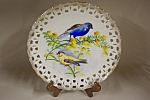Click here to enlarge image and see more about item CP159: VOAGCO Handpainted Bird Plate