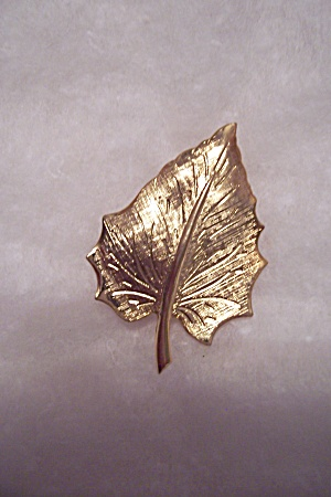 Gold Plated Pin/brooch