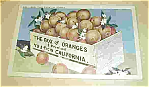 THE BOX OF ORANGES I PROMISED YOU FROM CA. (Image1)