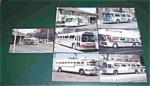 7 DIFFERENT BUSES POSTARDS POSTCARD (Image1)