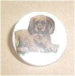 Click here to enlarge image and see more about item U27: MOTHER OF PEARL PUPPY