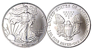 American Eagle Silver Dollar 1 troy ounce coin (Image1)