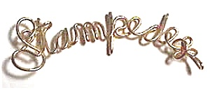 Stampede Name Gold Wire Pendant (Image1)