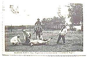 Buenos Aires Vida Campestre vintage postcard (Image1)
