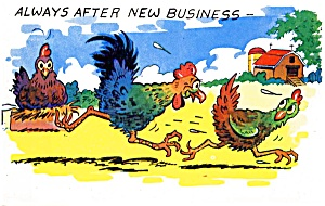 Postcard Humor Rooster Chicken #151 (Image1)