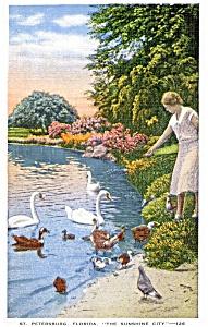 Vintage postcard St. Petersburg, Florida (Image1)