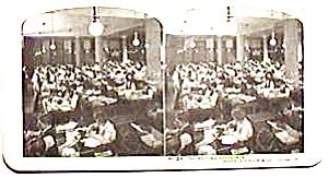 Sears Roebuck stereo view   #24 (Image1)