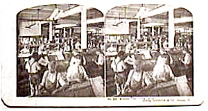 Sears Roebuck Stereo View #30