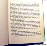 Click to view larger image of 'Dandelion Wine' by Ray Bradbury 1st edition book 1957 (Image6)