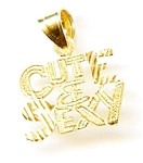 Click here to enlarge image and see more about item jfcsx1: Cute & Sexy 14k gold diamond cut pendant