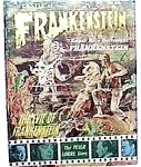 Click here to enlarge image and see more about item magmon1: Castle of Frankenstein magazine vol.2, #1 1964