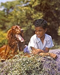 Click here to enlarge image and see more about item mb5: 1950s calendar print African American girl with dog