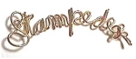 Stampede Name Gold Wire Pendant