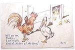 Rooster - Duck Humorous Postcard
