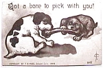 Click to view larger image of Vintage Dogs and  Bone humorous postcard (Image1)