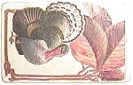 Click to view larger image of Antique vintage Thanksgiving postcard 1913-15 (Image1)