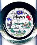 Click here to enlarge image and see more about item pldel50: Delaware Blue Hen State Plate Mid Century
