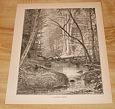 Antique 1885 Book Print, New York, A Catskill Brook In The Mountains