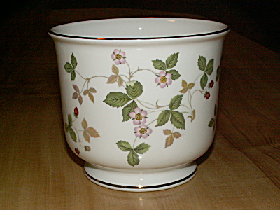 Wedgwood Wild Strawberry Bone China Flower Plant Pot Planter Cachepot