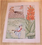 Click here to enlarge image and see more about item 10012: 1905 Ida May Rockwell Flower Babies Book Print Canna & Wistaria