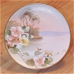 Click here to enlarge image and see more about item 247248: Lovely Hand Painted Nippon China Plate, 10 In., Tiny Rim Chips