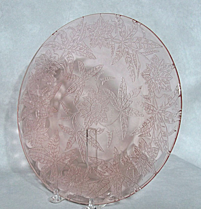 Pink Floral pattern 9 inch dinner plate (Image1)