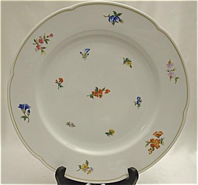 Bauscher Weiden Floral Dinner Plate (Image1)