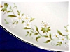 Click to view larger image of Rambling by Mikasa Dinner Plate (Image2)