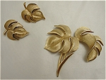 Click to view larger image of Vintage Trifari Brushed Gold Brooch and Earring Set (Image1)
