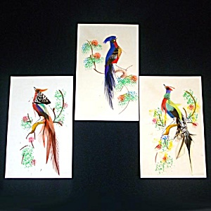 Set 3 Mexican Bird Feather Art Pictures