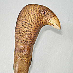 Antique Wood Cane Walking Stick Carved Bird Handle Glass Eyes