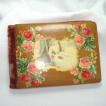 Click here to enlarge image and see more about item 13243: 1904 Celluloid Velvet Autogragh Album Roses, Winter Scene