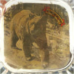 Click to view larger image of Yellowstone Souvenir Glass Ashtray With Bear Photo (Image2)